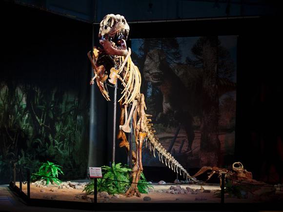 выставка диназавров в Чехии